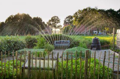 garden cold frame watering