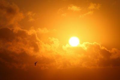 sunlight clouds sun