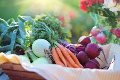 vegetables carrot onion gardening