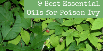 9 Best Essential Oils for Poison Ivy