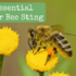 Best Essential Oil for Bee Sting