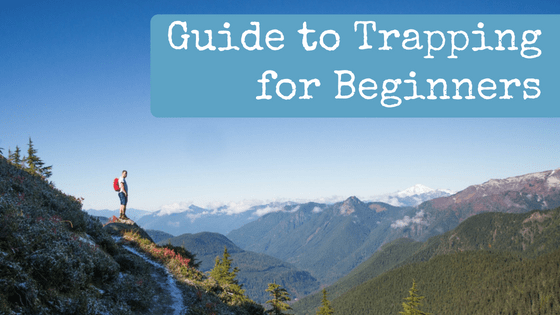 Guide to Trapping for Beginners
