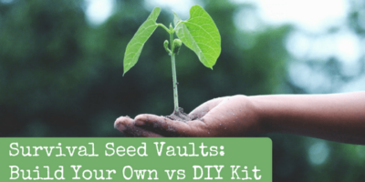 Survival Seed Vaults: Build Your Own vs DIY Kit