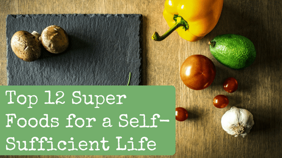 Top 12 Super Foods for a Self-Sufficient Life