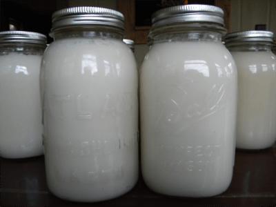 render lard white can