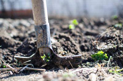 shovel in dirt gardening