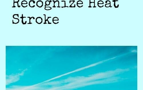 Beat The Heat: Inexpensive and Fun Ways To Survive With No AC + How To Recognize Heat Stroke