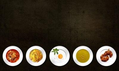meal food plates