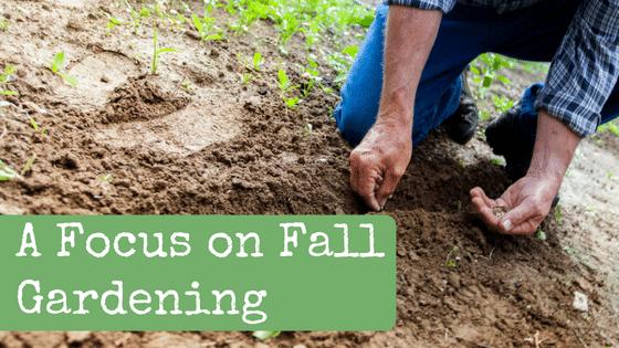 A Focus on Fall Gardening