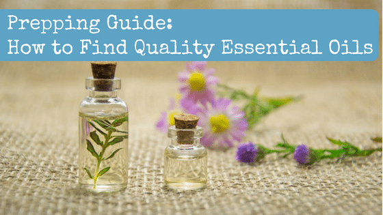 Prepping Guide: How to Find Quality Essential Oils