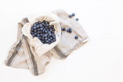 blueberry plant gardening antioxidant