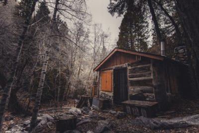 cabin winter forest jungle prepper shtf