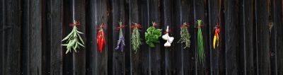 drying-herbs