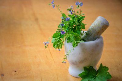 herbs-fresh