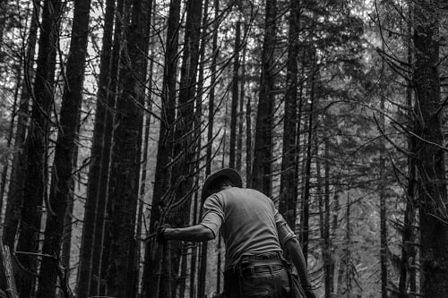 man alone in the woods