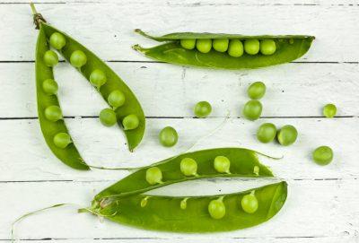 pea green gardening pod