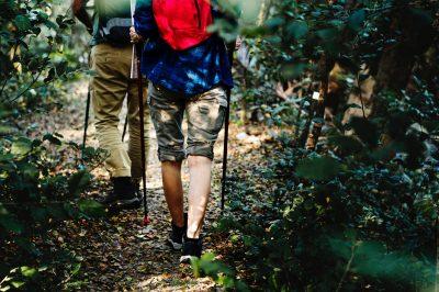 walk boys men in woods