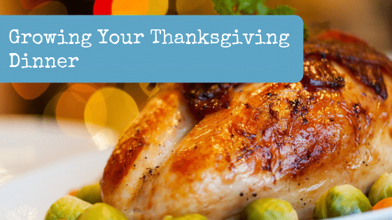 Growing Your Thanksgiving Dinner