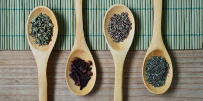Best Herbs and Spices for Preppers