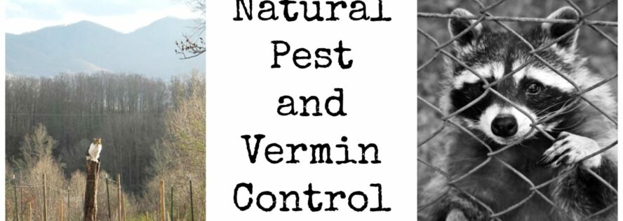 Natural Pest and Vermin Control
