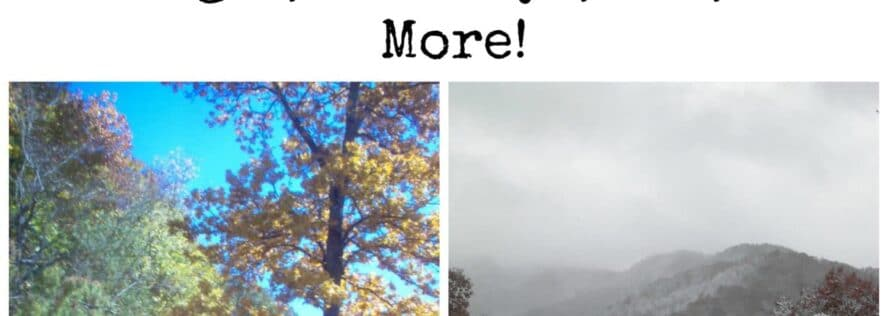 Transitioning From Fall To Winter & Staying Positive Tips For Dealing With Changes, Holidays, SAD, and More!