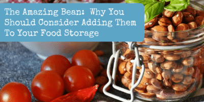 The Amazing Bean:  Why You Should Consider Adding Them To Your Food Storage