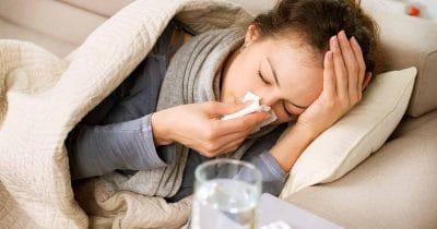 elderberry can cure the flu