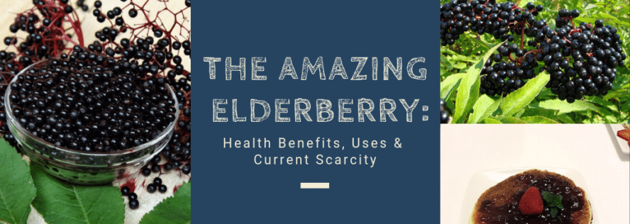 The Amazing Elderberry: Health Benefits, Uses & Current Scarcity