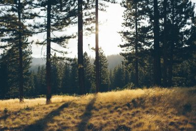 wilderness exploration for prepping
