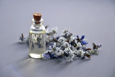 Introduction to Essential Oils for the Outdoors