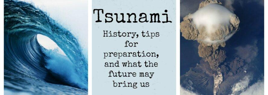 Tsunami: History, tips for preparation, and what the future may bring us