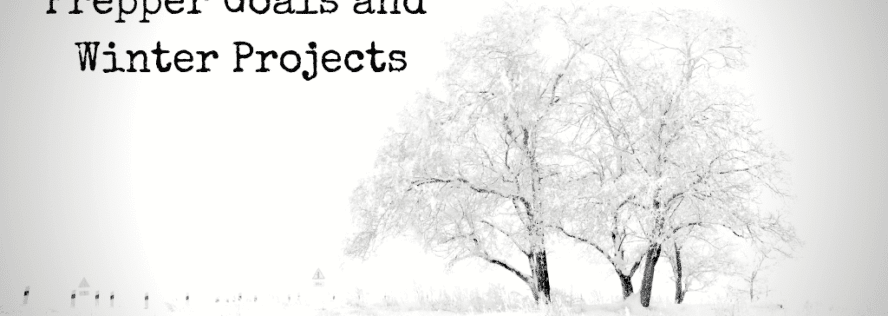 Prepper Goals and Winter Projects