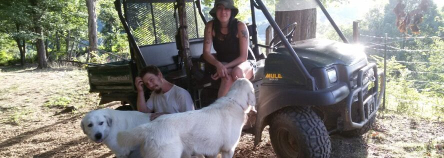 Stockpiling Pet and Livestock Feed For SHTF