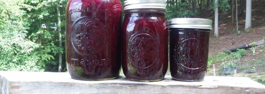 Recipe Friday:Making Blueberry Jam From Fresh Blueberries