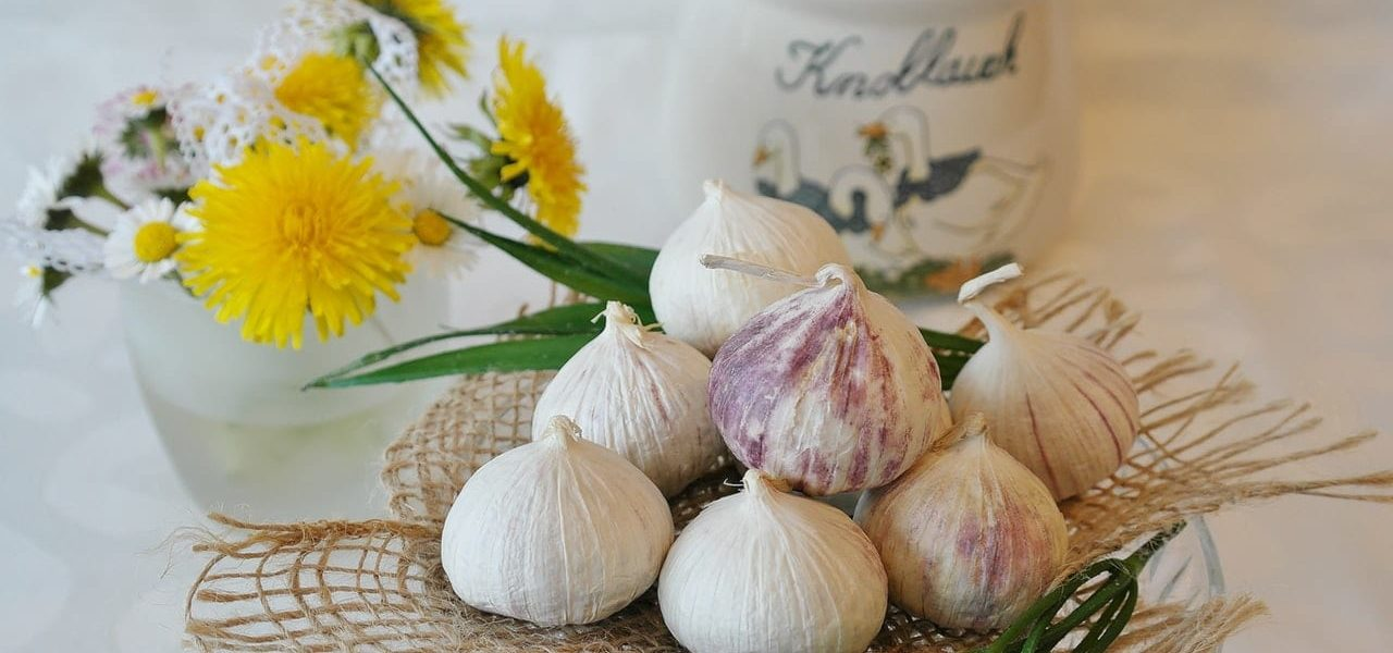 Garlic: A Powerfully Effective Herbal Remedy You Don't Want to be