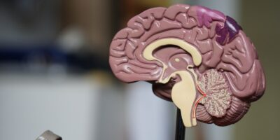 Can Covid-19 Cause A Change In Brain Chemistry and Behavior?