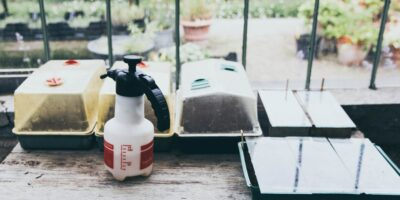Organic and Non-Organic Pesticides and Fungicides For Home Gardens