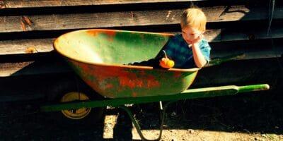 Exploring Wheelbarrows and Garden Carts