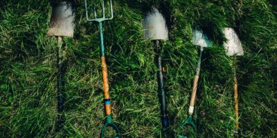Garden Tools: From Raised Beds To Large Gardens