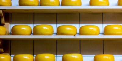 Shelf Stable Cheese and Fresh Cheese Preservation Methods For Preppers